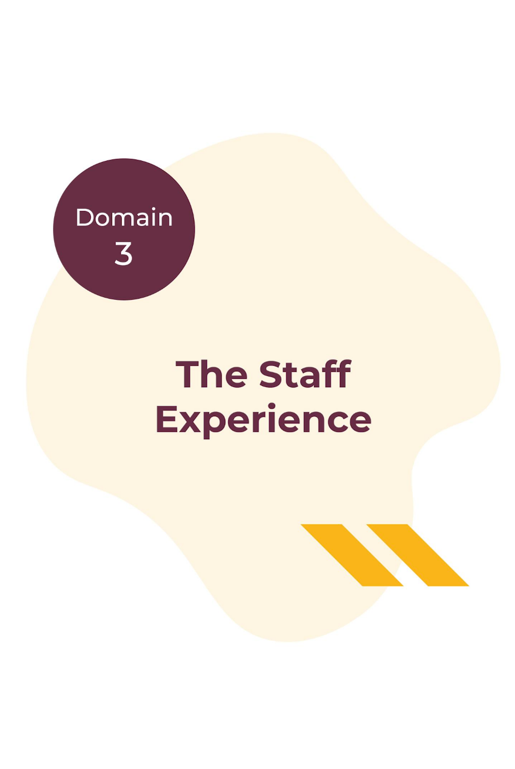 Domain 3 - The Staff Experience