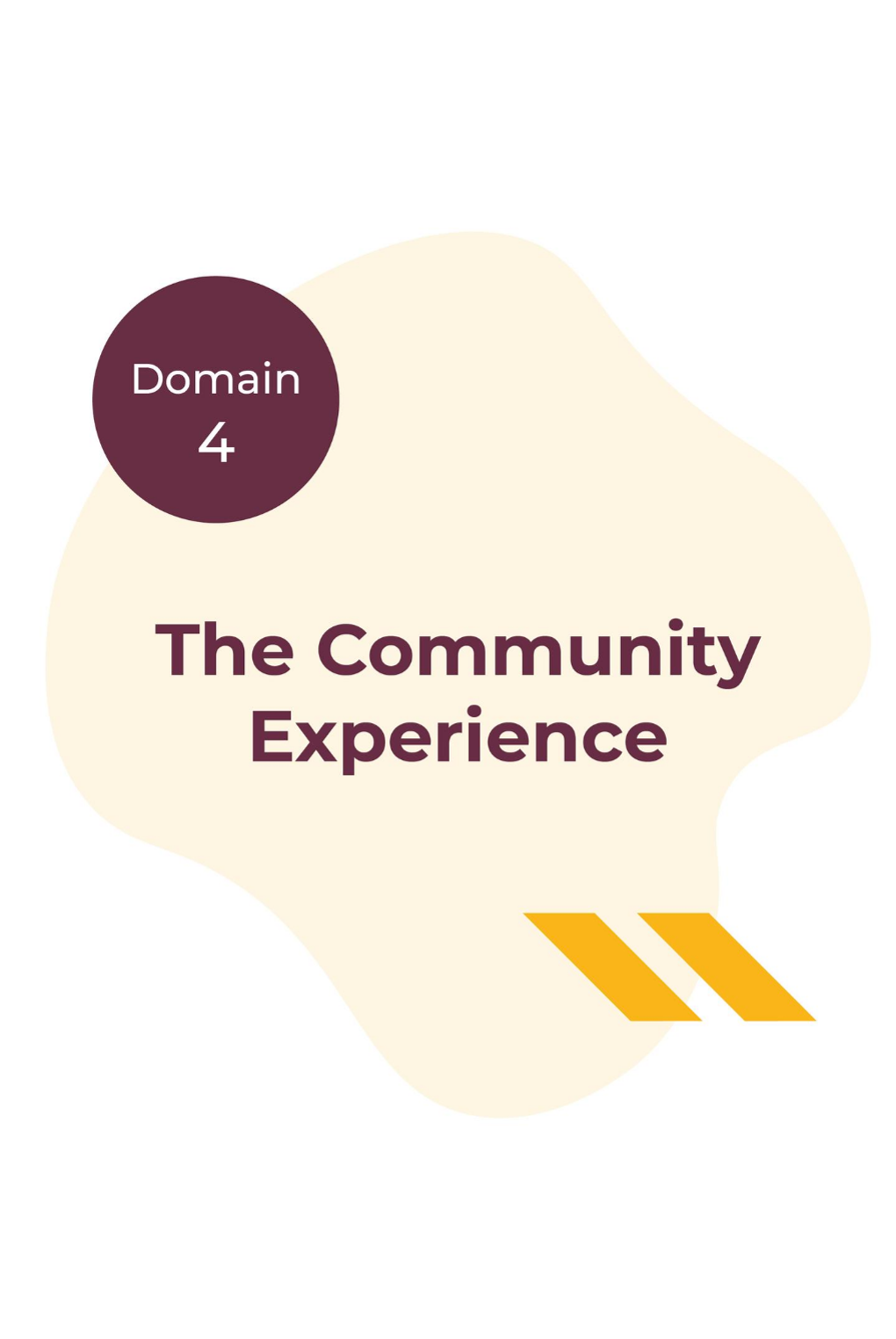 Domain 4 - The Community Experience